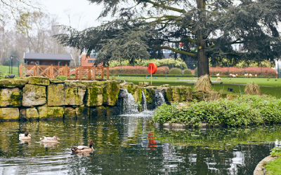 Stunning grounds for school holiday childcare at Whitgift School, Surrey
